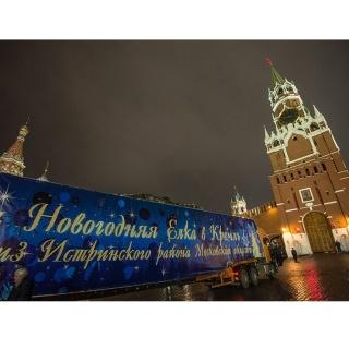 В Московский Кремль доставили главную новогоднюю ёлку страны