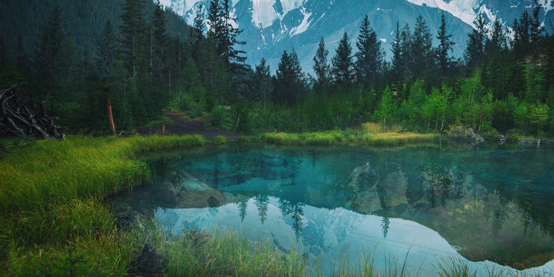 В центре фотографии находится озеро с прозрачно-голубой водой. Озеро окружено невысокими горными деревьями и травой. На заднем фоне возвышаются массивные горы, покрытые снегом. На гладкой поверхности озера отражаюся деревья и горы.