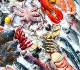 Пять лучших морепродуктов для рациона