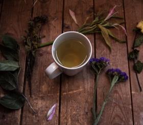 Почему важно пить зеленый чай каждый день?