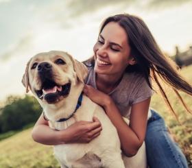 5 лучших мультфильмов про собак